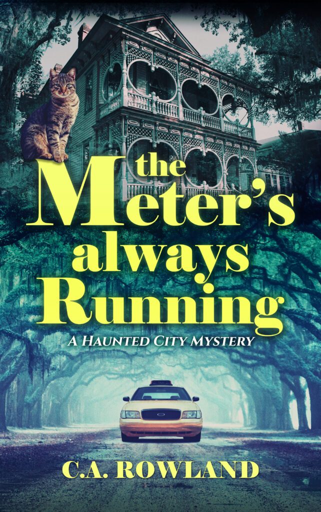 Book Cover: The Meter's Always Running