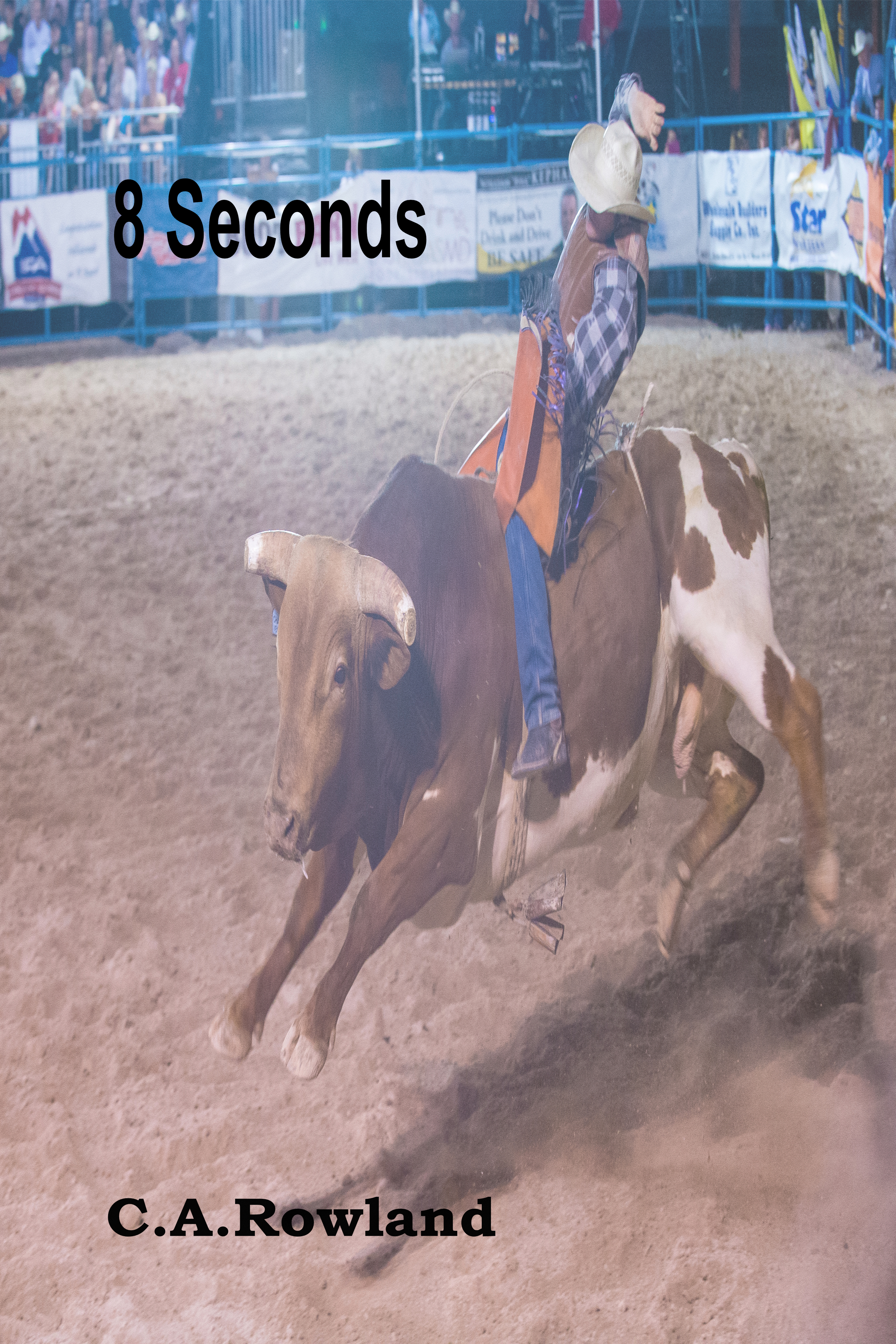 Book Cover: 8 Seconds
